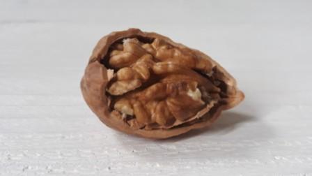 Een gekraakte walnoot